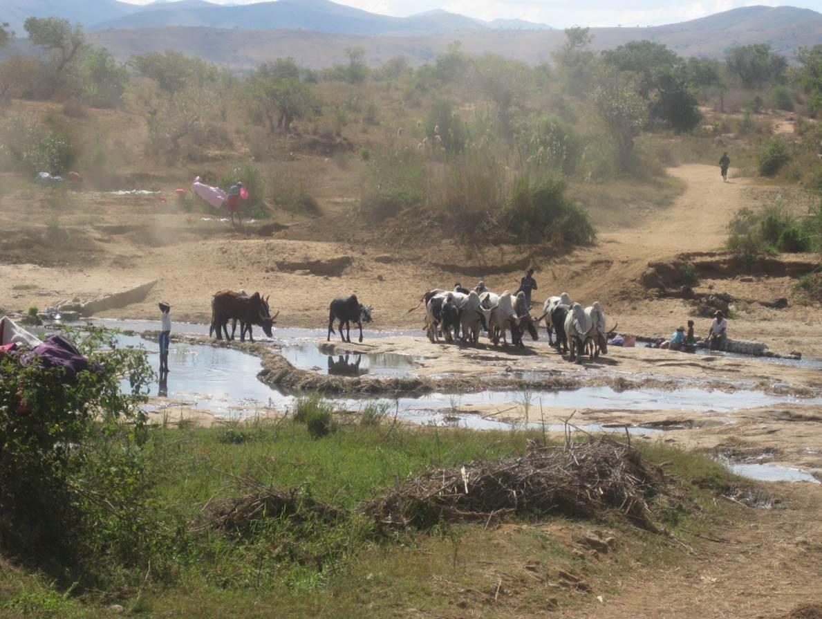 Traversée d'une rivière à SAKALALINA