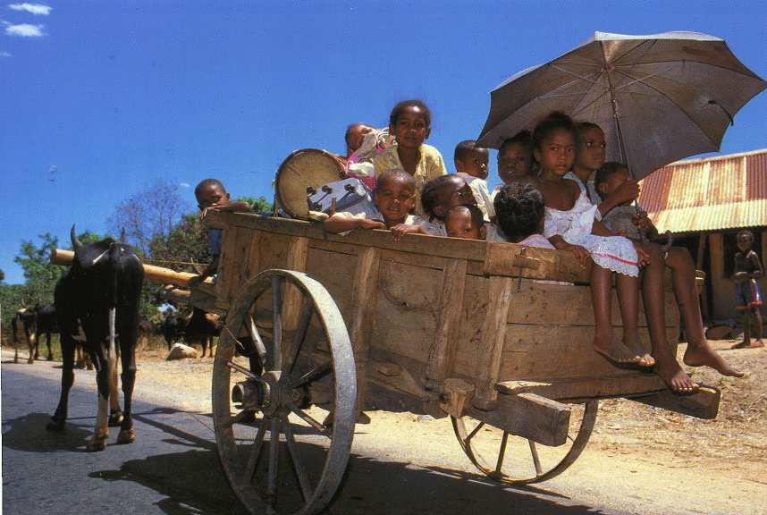Omnibus vers le marché
