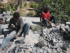 Madagascar 2010 1050